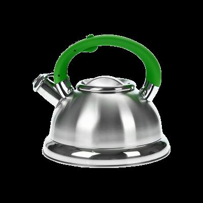 Czajnik nierdzewny z zieloną rączką HIVER 3l